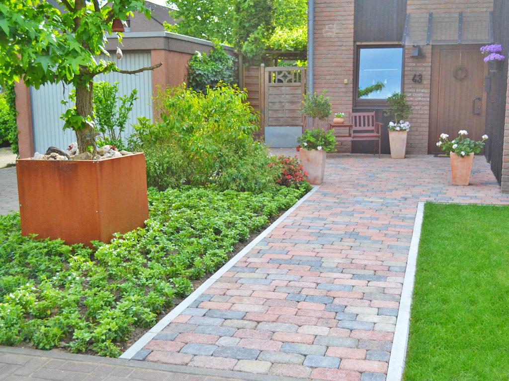 stunning vorgarten pflegeleichte bepflanzung ideas house. Black Bedroom Furniture Sets. Home Design Ideas