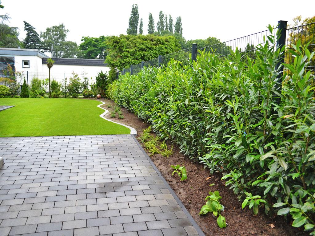 Garten Und Landschaftsbau Herne maik rohdich garten und landschaftsbau herne fachgebiet teich